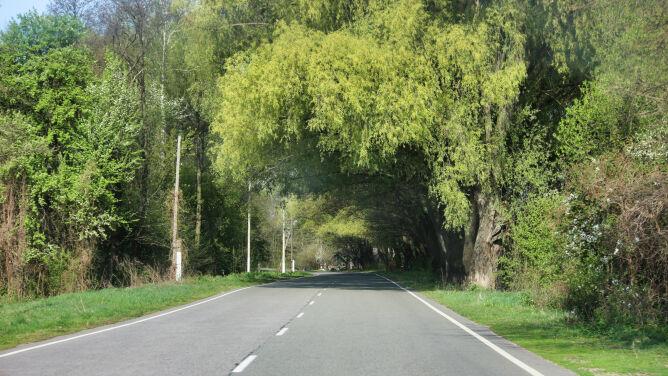 Suche drogi w niemal całym kraju